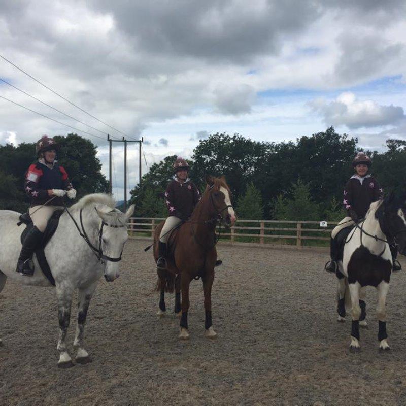 Wyvern Brown Team, Mercian Eventer Challenge June 2016