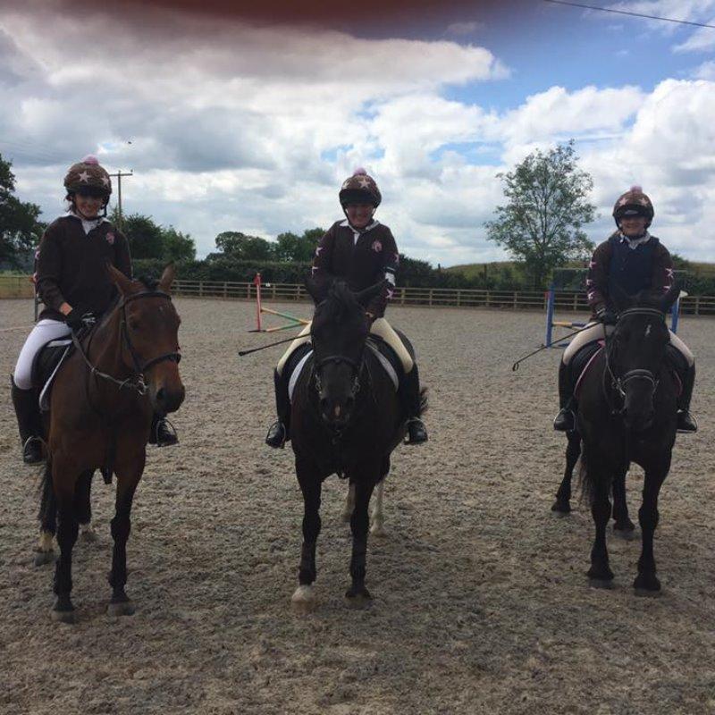 Wyvern Purple Team, Mercian Eventer Challenge June 2016