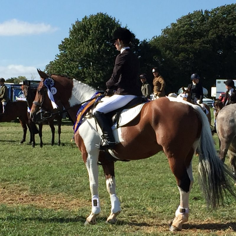 Boo and Spring at the Horse Trials Championships 2016