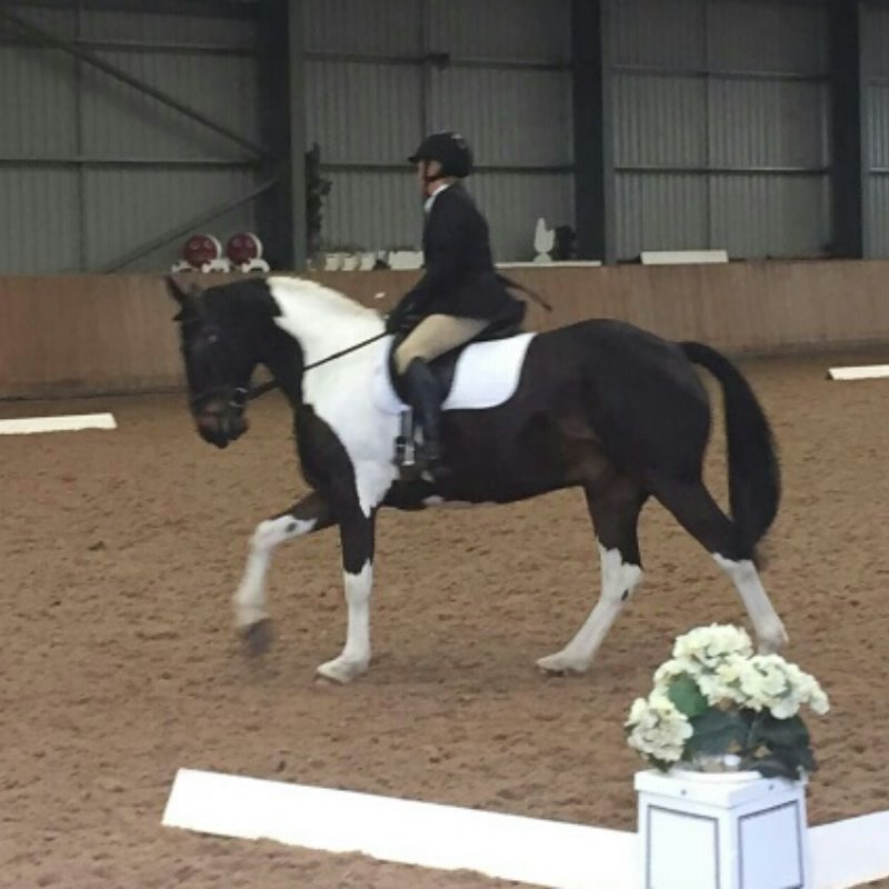 Mercian Dressage to Music May 2016 Bev Rose & High Ace