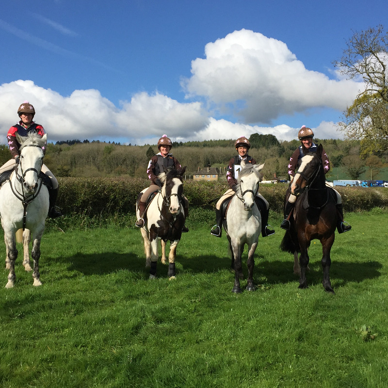 The Wyvern Brown Team at the Mercian Hunter Trials on 23 April 2016