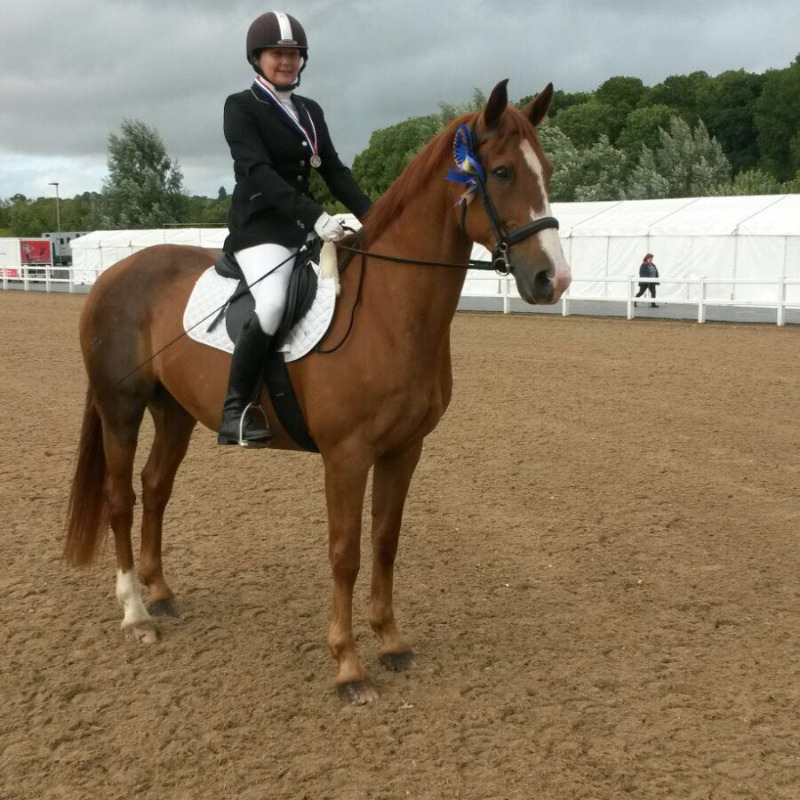 Steph Pinfield & Chester, 2nd Place at the SW Regional Championships at Hartpury, August 2016