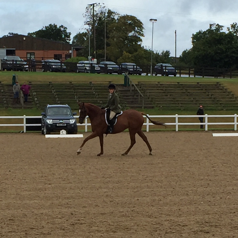 Tor Briggs & Louise at SW Regional Championships, Hartpury, August 2016