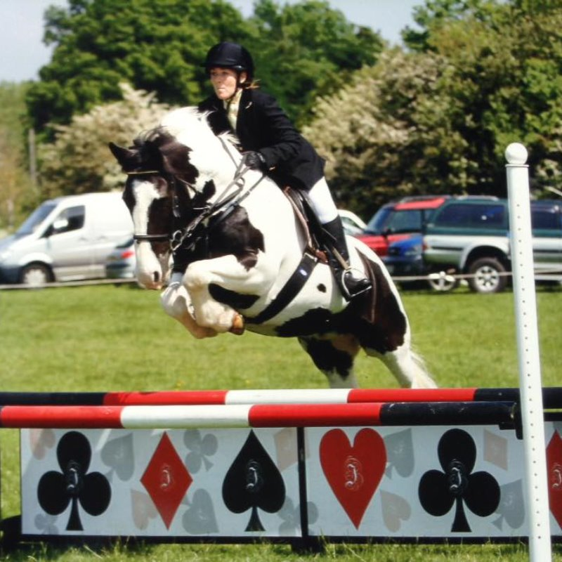 Area SJ at Malvern on 29th May 2016 - Laura Pitt & Herbie